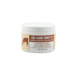 UD-CARE MINT